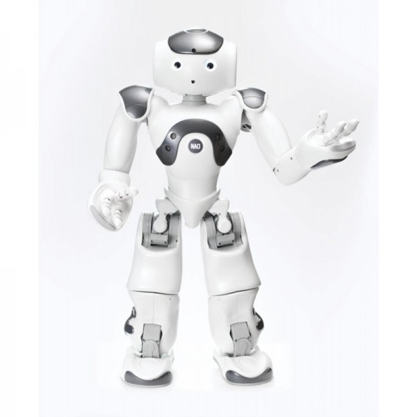 Nao 6 Business Edition